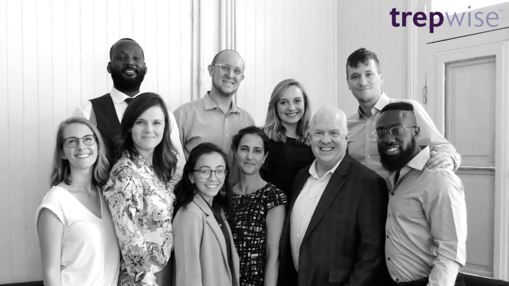 trepwise-Team-growth-consulting